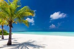 Två palmträd som förbiser den blåa lagun- och vitstranden Arkivfoto