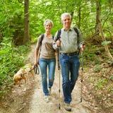 Två pensionärer som går med hunden i skog Royaltyfri Bild