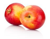 Två röda äpplefrukter på vit bakgrund Royaltyfri Bild