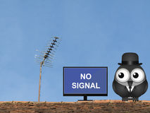 TV Reception. Comical bird locating his television on the roof in an attempt to gain a better signal Stock Photo