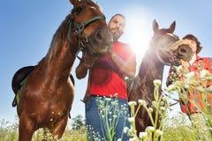 Två ryttare med bruna hästar i sommarfält Arkivbild