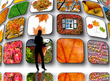 Tv screen Royalty Free Stock Photos