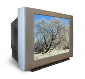 Tv set with frozen tree in winter Stock Images