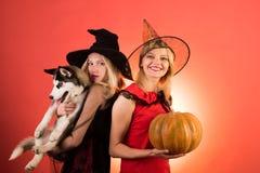 Tv? sexiga allhelgonaaftonflickor med pumpa Festlig halloween design Emotionella unga kvinnor i halloween dräkter på partiet arkivbilder