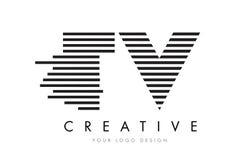 TV T V Zebra Letter Logo Design with Black and White Stripes Stock Photography