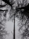 TV-Toren Losevo stock afbeelding