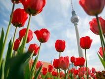 TV Tower, Berlin Stock Photos