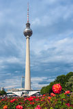 TV Tower in Berlin. Germany Stock Photography