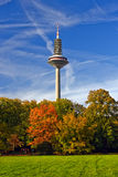 TV tower in Frankfurt am Main Royalty Free Stock Photography