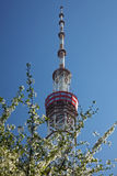 TV tower in Kiev Royalty Free Stock Photography
