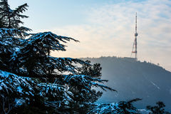 TV-tower Royalty Free Stock Photos