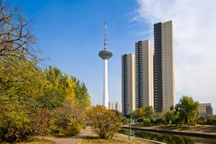 TV tower in Shenyang. Autumn park, skyscrapers and TV tower in Shenyang, China Royalty Free Stock Photos