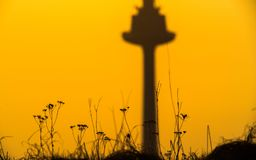 golden sunrise, tv tower and dry grass Royalty Free Stock Photo