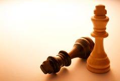 Två träkonung Chess Pieces Royaltyfria Foton