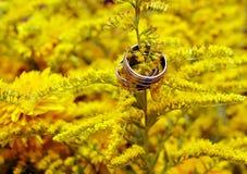 Två vigselringar bland gula blommor Arkivbilder