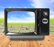 TV vintage and Agriculture paddy field Royalty Free Stock Photos