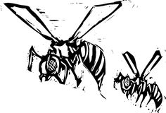 två wasps Royaltyfri Fotografi