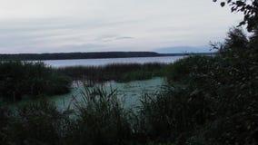 Tver берега реки volga реки стоковое изображение
