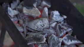 TView van hete vlammende houtskoolbriketten die in de bbq grillkuil gloeien stock videobeelden
