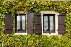 Tvilling- fönster som omges av murgrönan r france Arkivbilder