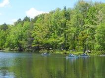 Tvilling- sjöar på Bushkill nedgångar på Poconos, Pennsylvania Arkivfoto