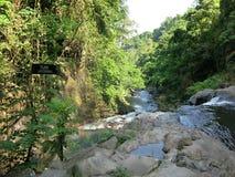 Tvilling- vattenfall i Sambangan den hemliga tr?dg?rden i Bali, Indonesien arkivfoto