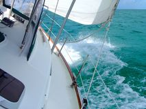tävlings- yacht Arkivbild