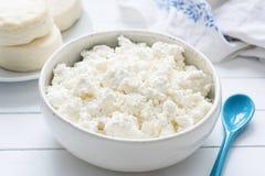 Tvorog、农夫乳酪,凝乳酪或者酸奶干酪在白色碗在白色木桌上 免版税库存照片