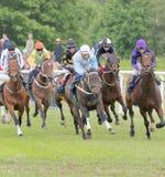 Twarda rasa między biegowymi koniami Zdjęcia Royalty Free