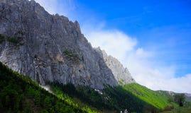 Twarde góry i lasy Obraz Royalty Free