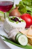 Twarog polonês do queijo Imagem de Stock