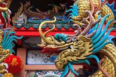 Twarz colourful smok zdjęcie royalty free