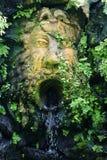 twarz kamień Obrazy Royalty Free