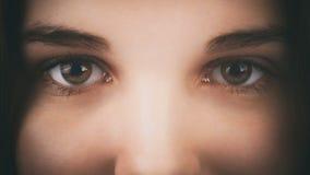 Twarz młoda dziewczyna z orzechowymi brown zielonymi oczami fotografia stock