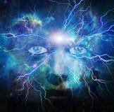 Twarz wszechświat obraz royalty free