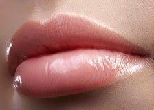 Twarzy część Piękne żeńskie wargi z naturalnym makeup, czysta skóra Makro- strzał żeńska warga, czysta skóra świeży buziak zdjęcia stock