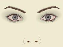 twarzy kobieta Obraz Stock