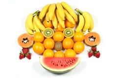 twarzy owoc Obraz Stock