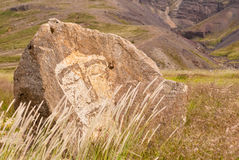 twarzy skała zdjęcia royalty free