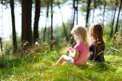 Twee aanbiddelijke kleine zusters die in een bos wandelen royalty-vrije stock afbeeldingen