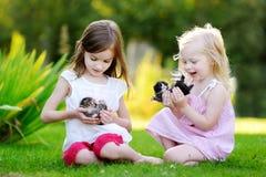 Twee aanbiddelijke kleine zusters die met kleine pasgeboren katjes spelen Stock Afbeelding