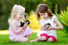 Twee aanbiddelijke kleine zusters die met kleine pasgeboren katjes spelen Royalty-vrije Stock Afbeeldingen
