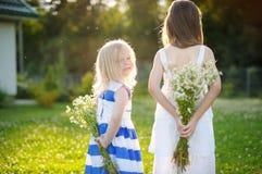 Twee aanbiddelijke kleine zusters die wilde bloemen houden Stock Foto's