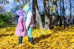 Twee aanbiddelijke meisjes die de herfst van zonnige dag genieten Royalty-vrije Stock Afbeeldingen
