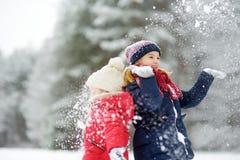 Twee aanbiddelijke meisjes die pret samen in mooi de winterpark hebben Mooie zusters die in een sneeuw spelen royalty-vrije stock foto