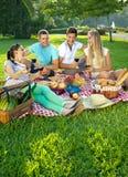 Twee paren die in een park picnicking Stock Afbeeldingen