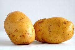 Twee aardappels Royalty-vrije Stock Foto's