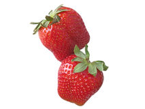 Twee aardbeien Royalty-vrije Stock Foto