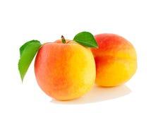 Twee abrikozen met bladeren Royalty-vrije Stock Afbeeldingen