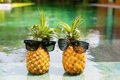 Twee ananassen met zonnebril die door de pool koelen stock fotografie